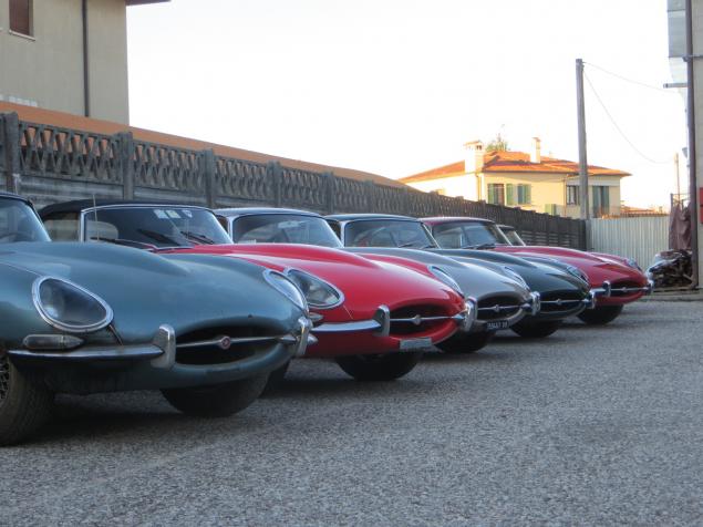 panoramica delle nostre Jaguar
